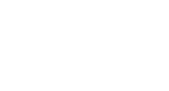 Dallas Video Festival logo